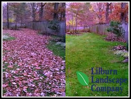 fall leaf removal before and after